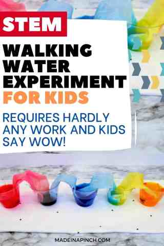walking water experiment for kids pin image