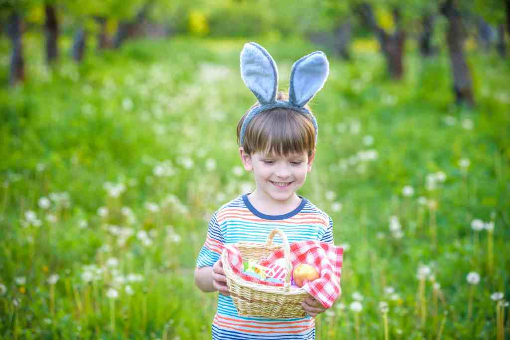 Cute little kid boy with bunny ears having fun with traditional Easter eggs hunt