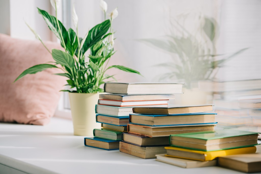 stacks of books and a houseplant near a window