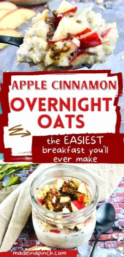 apple cinnamon overnight oats long pin image