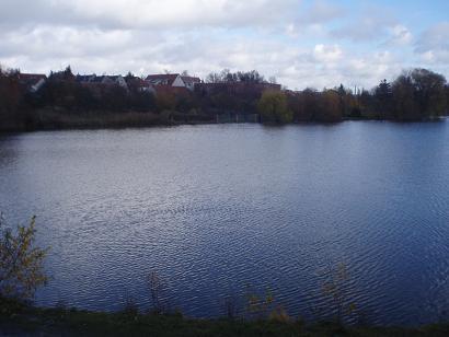 lago3.jpg
