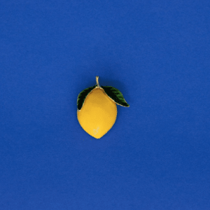 Bijoux Clap Lenny Citron