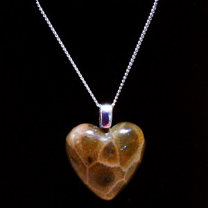 Petoskey Stone Heart Necklace