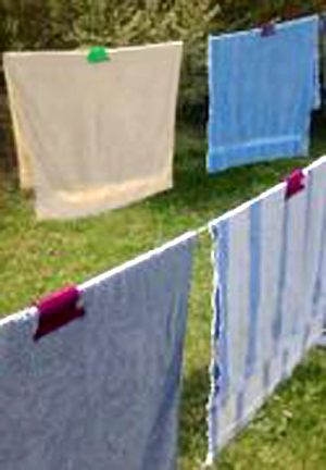 Zip Fresh Clip Clothes Line