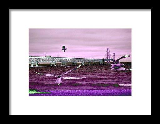 Mackinac Bridge Seagulls Print