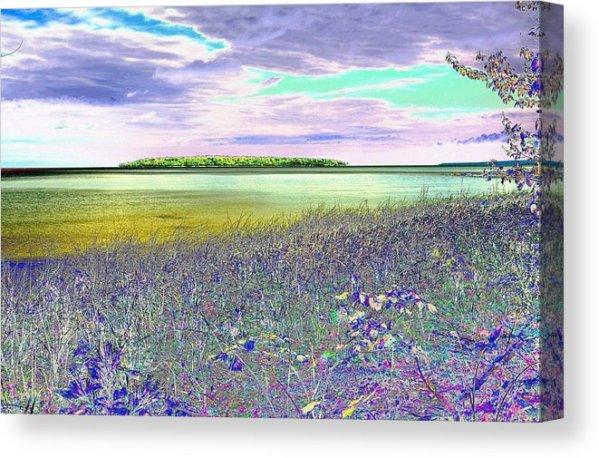 Au Train Island Greened Over Canvas Print