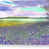 Au Train Island Greened Over Canvas Print