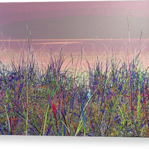 Blue Grass Canvas Print Lake Superior Beach