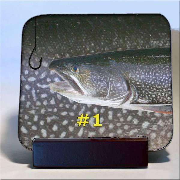 Michigan Fish Coaster #1
