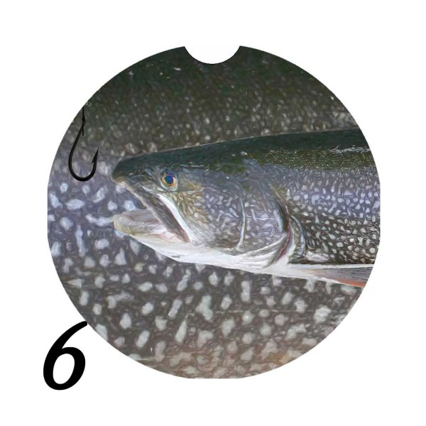 Michigan Fish Car Coaster 6