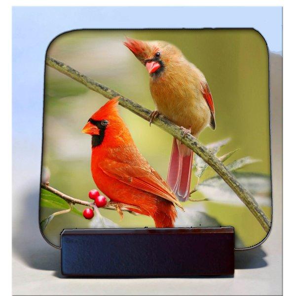 hardboard coaster cardinals
