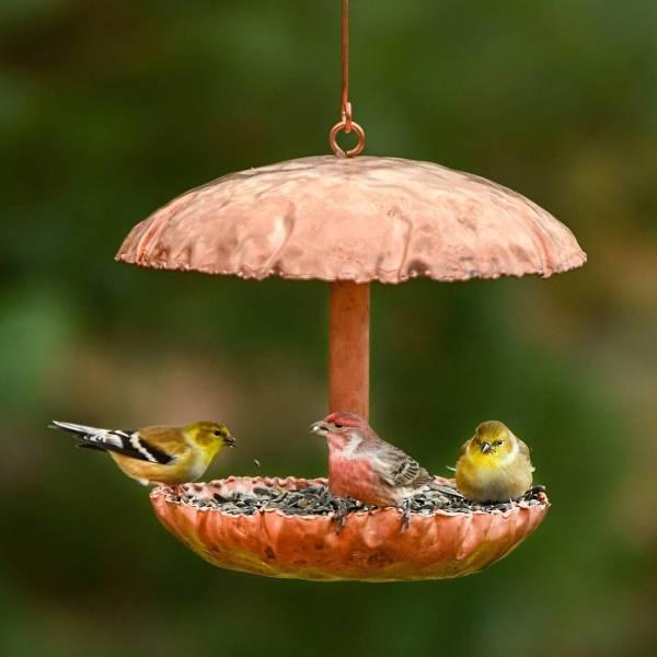 Pure Copper Bird Feeder