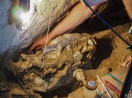 Archéologie - Tautavel - La Caune de l'Arago-5