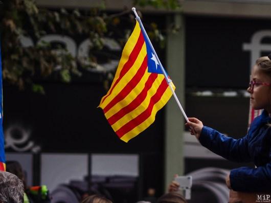 Diada Catalunya Nord - Novembre 2017-040216