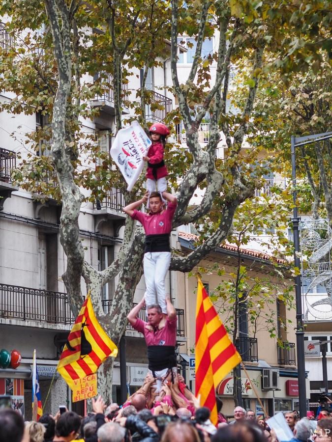 Diada Catalunya Nord - Novembre 2017-040374