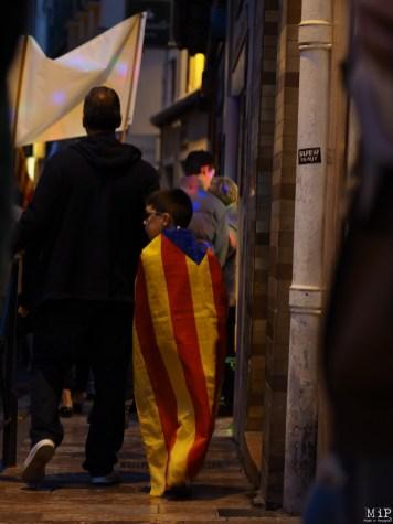 Diada Catalunya Nord - Novembre 2017-040769