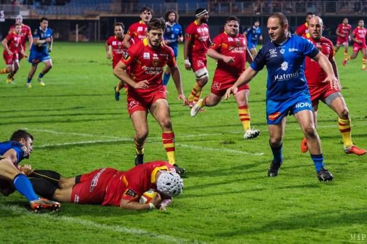 USAP vs Castres Olympique-240472