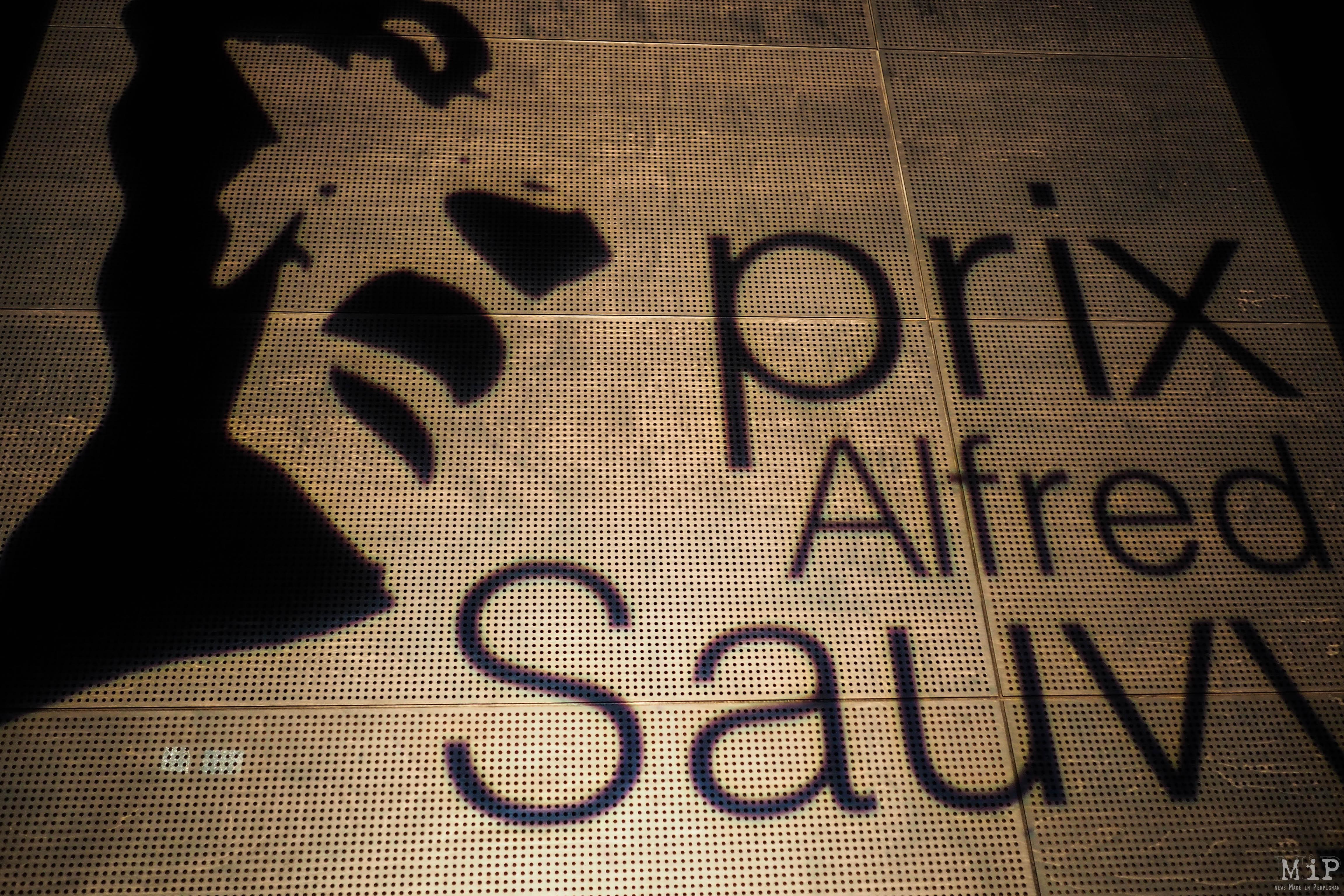 Prix Alfred Sauvy