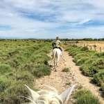 KikiMagTravel à la découverte du Parc Naturel régional de la Narbonnaise