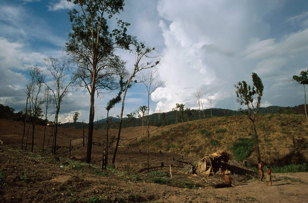 © Patrick Aventurier Reportage: Mlabris : les derniers survivants du peuple des feuilles jaunes