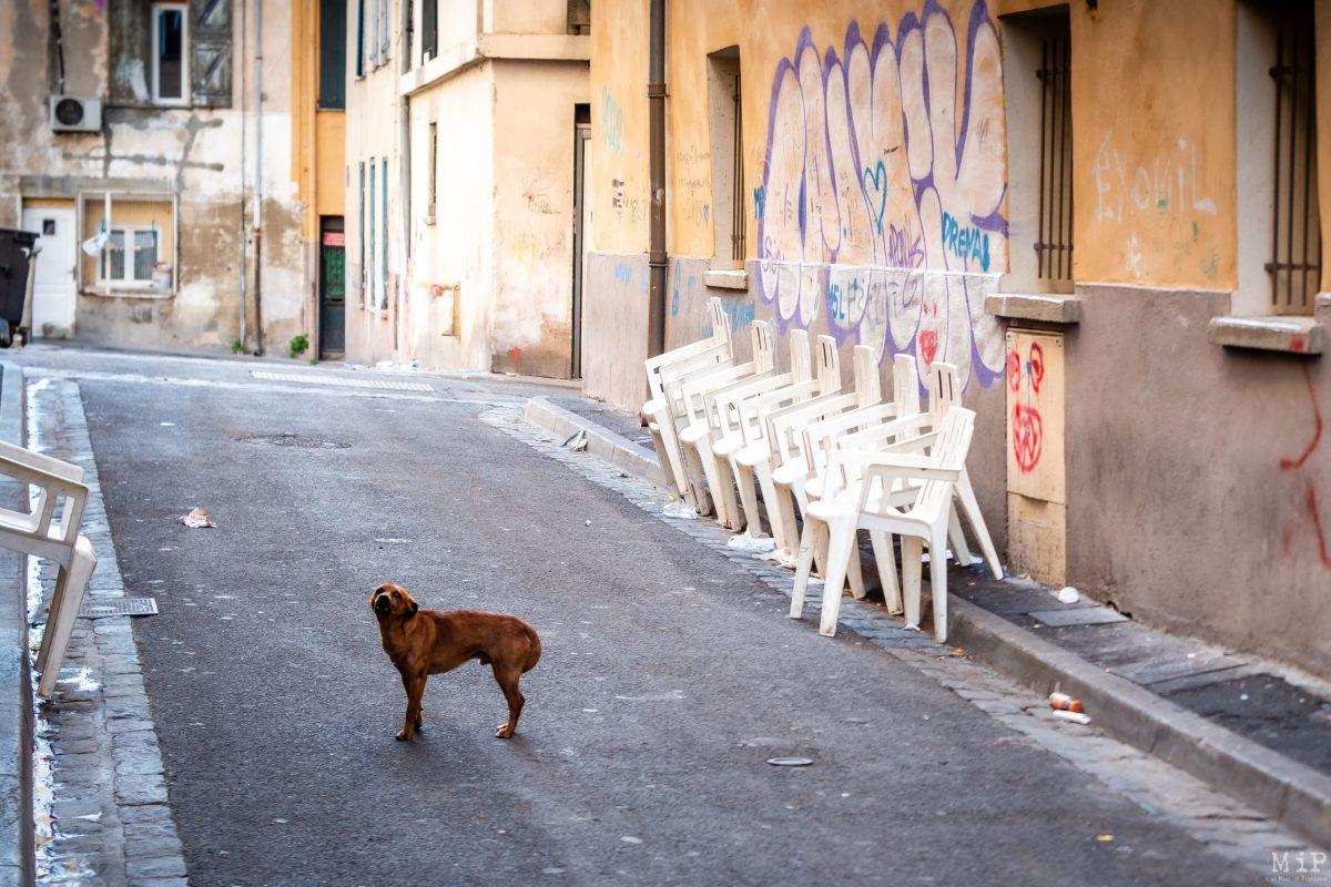 Saint-Jacques Perpignan - La communauté gitane en période de pandémie Coronavirus Covid-19