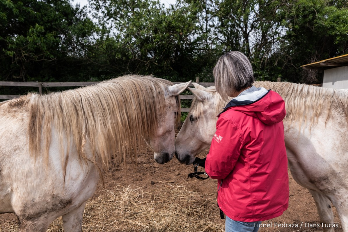 Villeneuve de la Raho, April 17, 2020, equestrian center. Close to the public since March 17, 2020 following the containment established during the COVID19 pandemic. Rachelle, originally from Canada, manager of the equestrian club says that she is passionate about her job and loves her horses. Villeneuve de la raho, 17 avril 2020, centre equestre. Fermer aux public depuis le 17 mars 2020 suite aux confinement instaure lors de la pandemie du COVID19. Rachelle originaire du Canada, gerante du club equestre dit tenir par passion de son metier et par amour de ses chevaux.