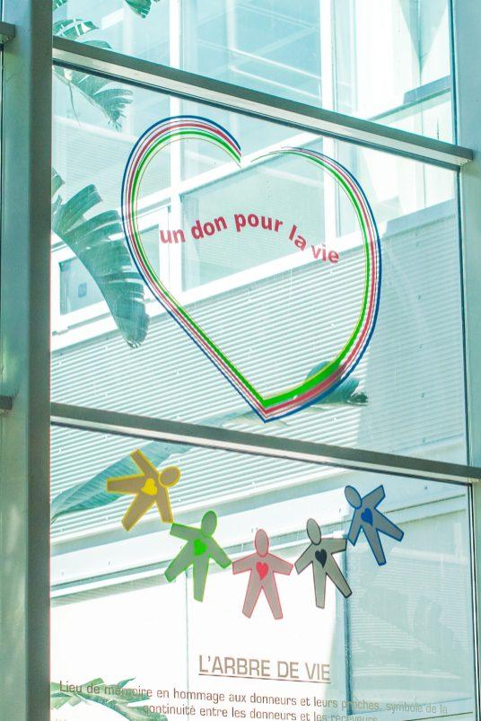 Lieu de mémoire pour le don d'organes. Photographie © Stephane Ferrer Yulianti