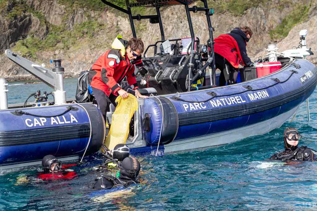 France, Collioure, 2021-05-07. A team of divers near Collioure. Placement of several devices with innovative technologies (hyperspectral camera, trackfish) and recovery of data on the marine ecosystem studied. Photograph by Arnaud Le Vu / Hans Lucas.  France, Collioure, 2021-05-07. Une equipe de plongeurs au large de Collioure. Placement de plusieurs appareils aux technologies innovantes (camera hyperspectrale, trackfish) et recuperation de donnees sur l'ecosysteme marin etudie. Photographie de Arnaud Le Vu / Hans Lucas.