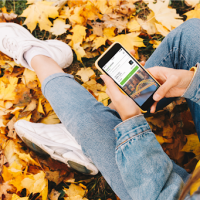 'Fall' in love with parking - Get the PayByPhone app, the newest way to pay for parking in Pittsburgh!