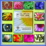 2017 cd case calendar on recycled paper by made in the shea'd