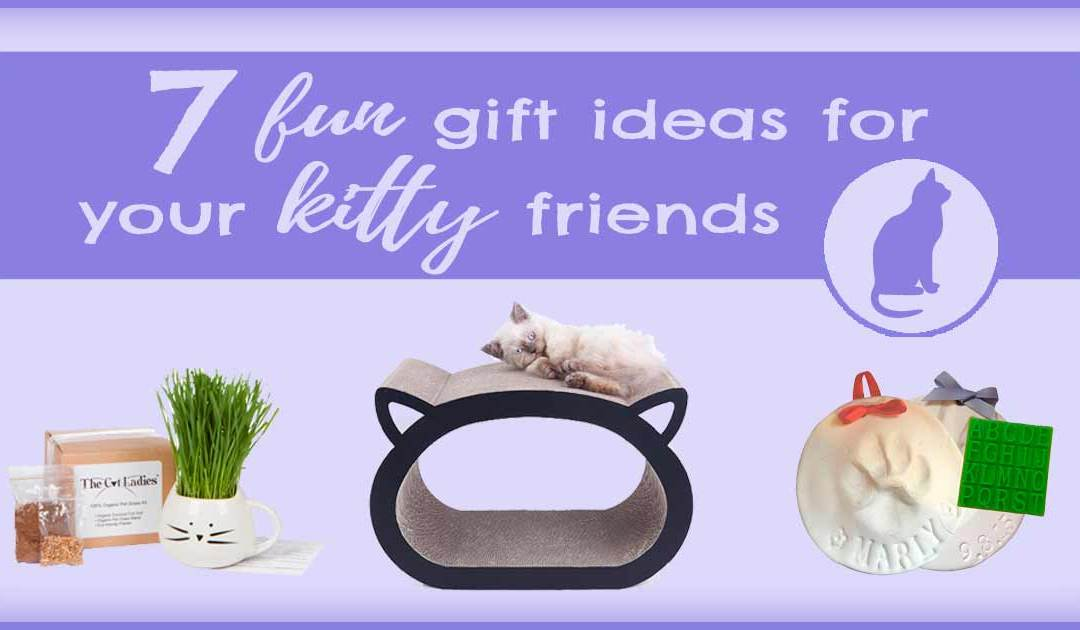 7 Fun Gift Ideas for Your Kitty Friends
