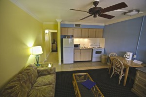 One Bedroom Living