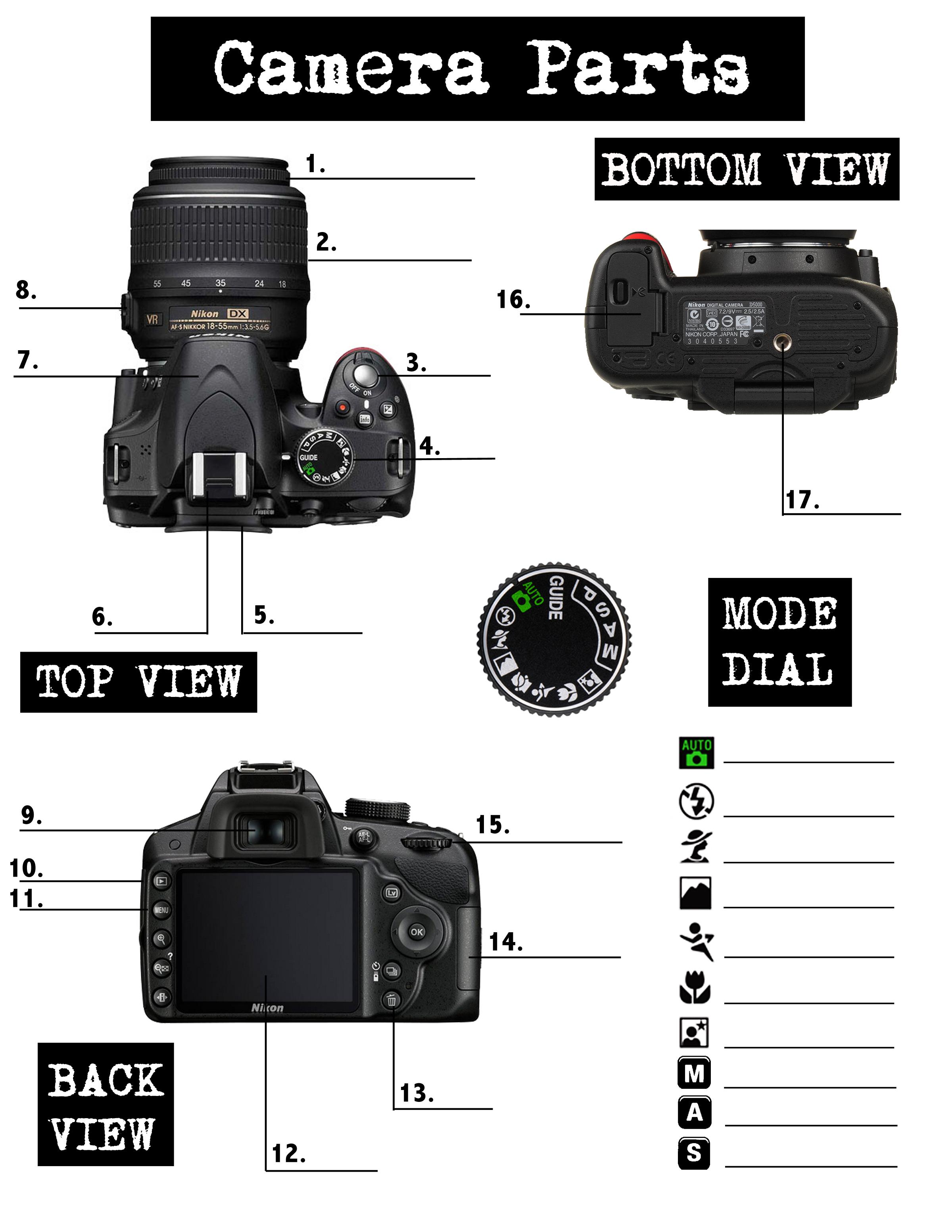Parts Of A Digital Camera Worksheet