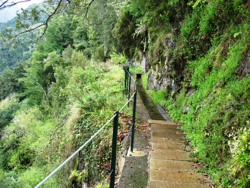 King's Levada Walk (Medicinal herbs) and Northeast views in Madeira (2)
