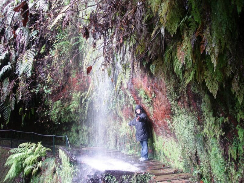King's Levada Walk (Medicinal herbs) and Northeast views in Madeira (6)