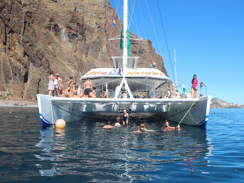 Dolphin & Whale Watching in Madeira Island (6)