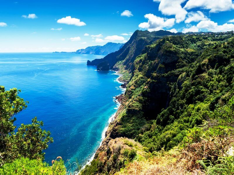 Restinox Madeira Holiday Package - Aesthetic treatment with hyaluronic acid + Botox + Wires (7)