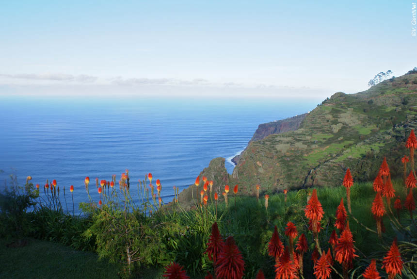 Crossing Madeira Island 8 Days Program