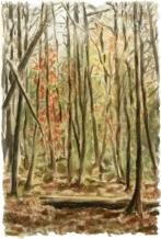 """""""Pisgah"""" Watercolor on paper, 8""""x10"""". 2013."""