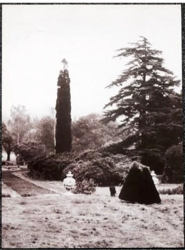 Tittenhurst-x-y