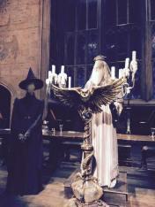day 7.2 dumbledore costume