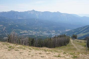 View of the mountainside from the top of Moose Tracks!