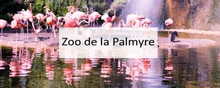 Zoo de la Palmyre - Made me Happy - Blog Bordeaux Lifestyle (cover)