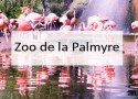 Zoo de la Palmyre - Made me Happy - Blog Bordeaux Lifestyle (cover)