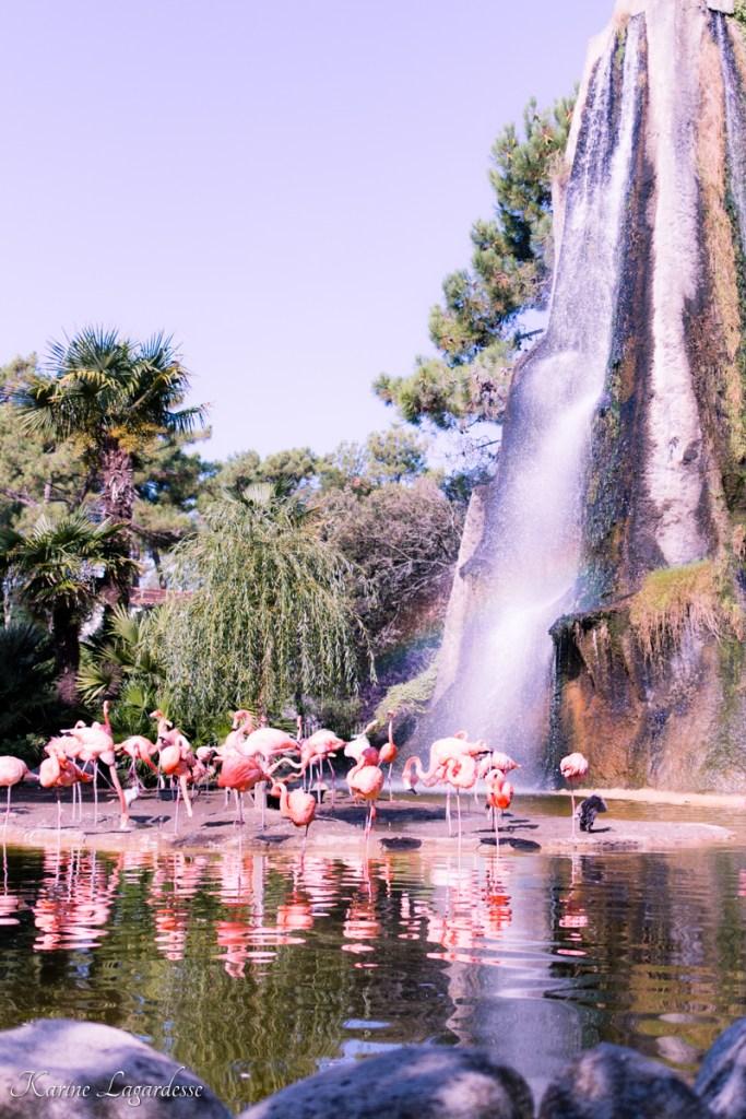 zoo-palmyre-made-me-happy-blog-bordeaux-11