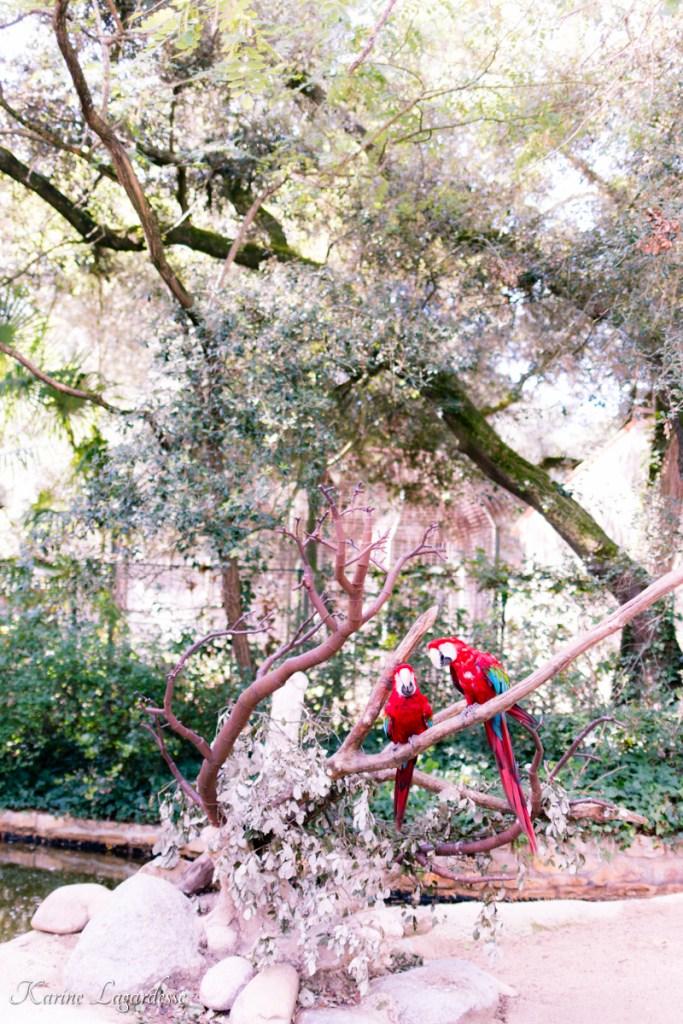 zoo-palmyre-made-me-happy-blog-bordeaux-15