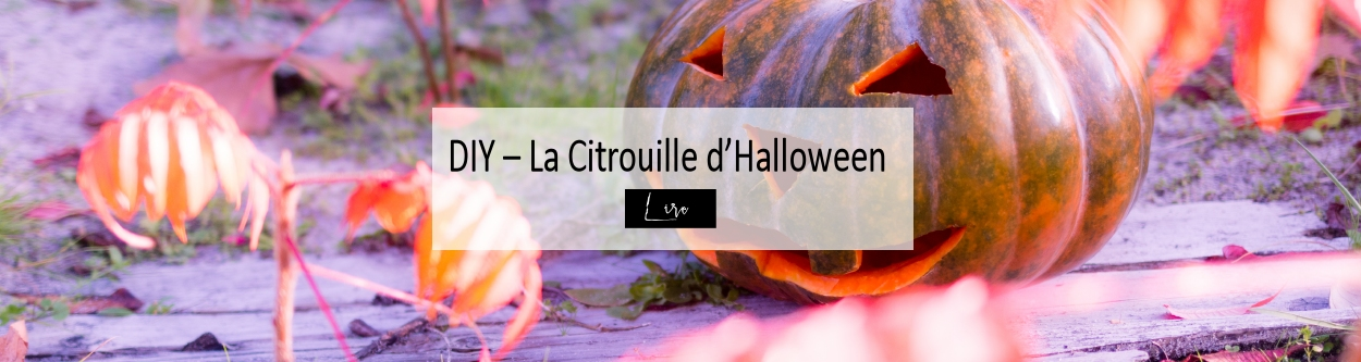 DIY - Citrouille d'Halloween - Blog Made Me Happy Bordeaux (slider)