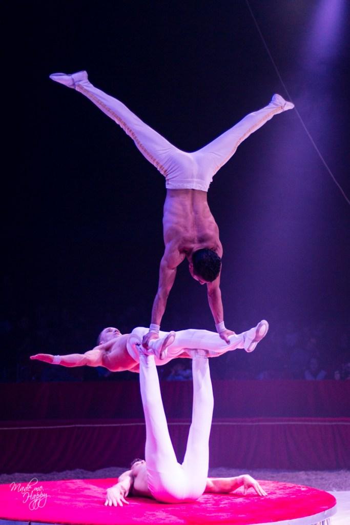 Grand Cirque de Noël - Blog lifestyle Bordeaux-37