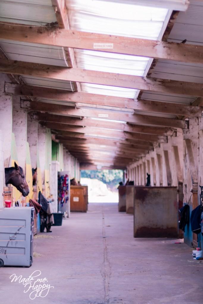 Poney Club Cap Ferret - Blog famille Bordeaux