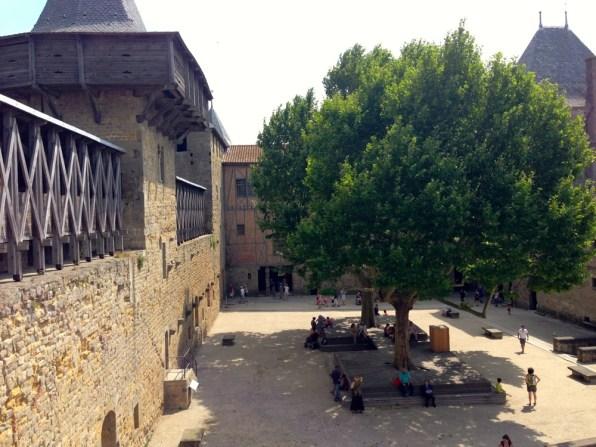 Carcassonne 9